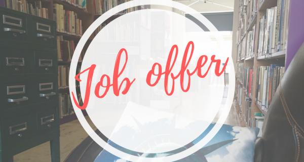Job Offer : Animateur / Animatrice Anglophone En Charge De L'organisation Des Clubs