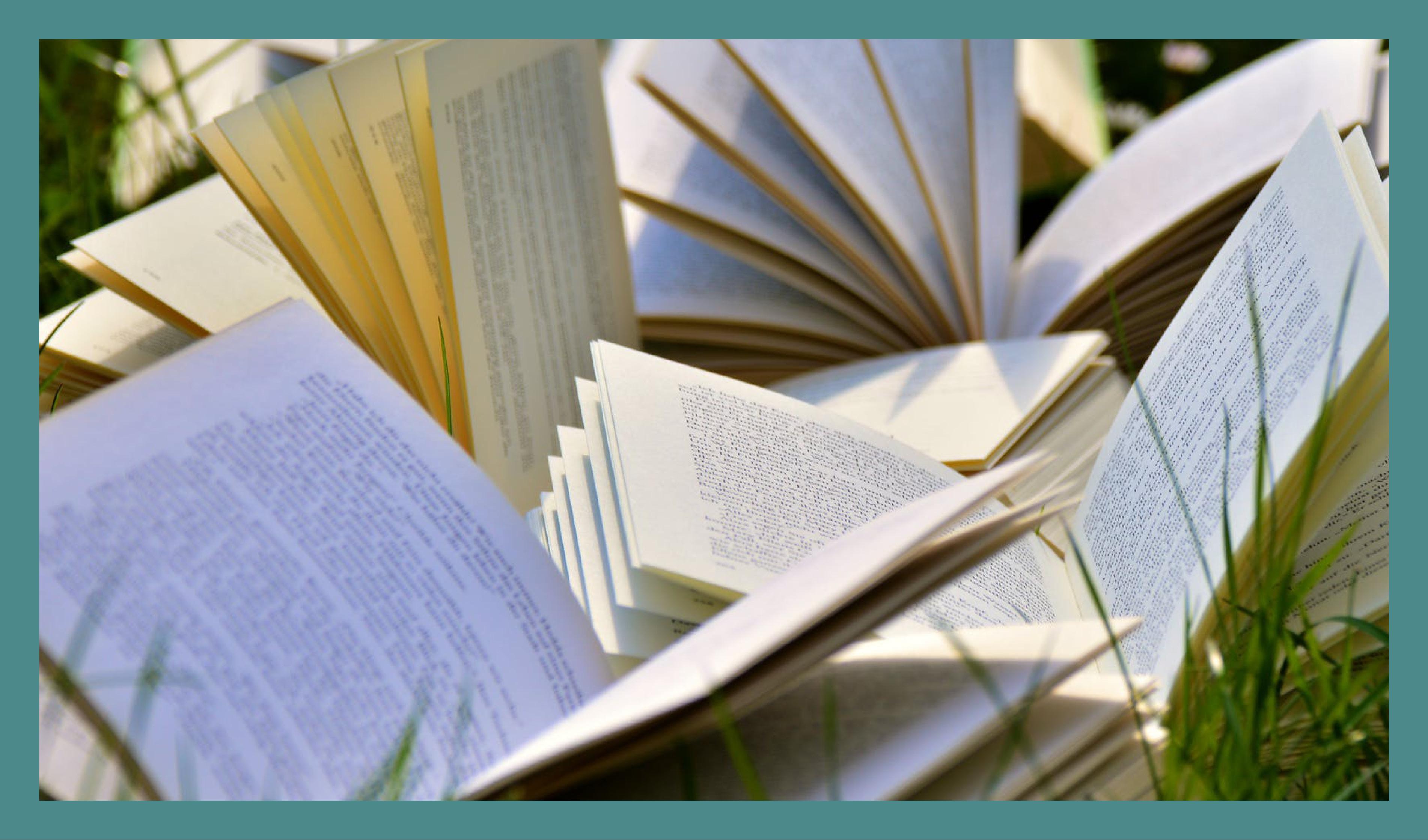 Braderie D'été De La Bibliothèque